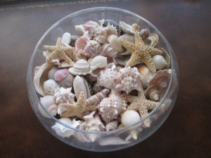 Shells from the Del